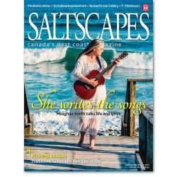 Saltscapes